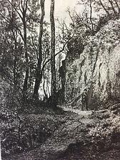 Une allée du bout du monde Château-Gontier Mayenne 1872 A Tancrède