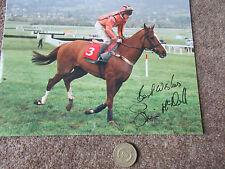 Simon McNEIL on MEDIATOR 28/1/95  Horse Racing Original Hand SIGNED Press Photo