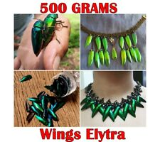 new500g Wings Elytra Natural Jewelry Craft Real Green Golden Design Insect
