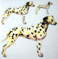 Dalmation Dog Rub On Permanent Transfer Glass Tiles Ceramic Scrapbooking DT107