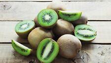 200Pcs Kiwi Seeds Plants Fruit Actinidia Deliciosa Kiwifruit Chinese Gooseberry