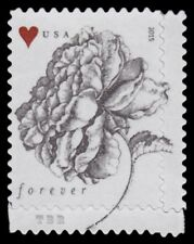 4959 (CF1) Postal Counterfeit Rose and Heart Forever Stamp 2015 MNH - Buy Now