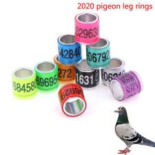 2020 20pcs 8mm pigeon leg rings identify dove bands pigeon training supplies_ZT