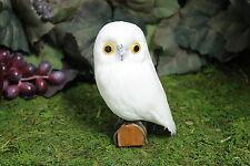 White Realistic Feather Owl Bird Taxidermy Owls Furry Animal Bird Small