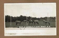 RPPC Deer at Roosevelt Park, Minot,ND North Dakota