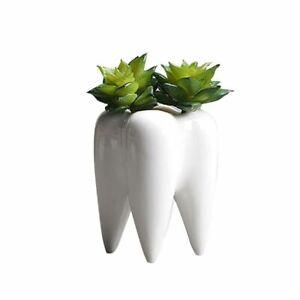 Desktop Ceramic Succulent Pot Tooth Shaped Modern Design Flower Vase Home Decors