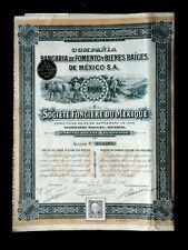 STE FONCIÈRE DU MEXIQUE - ACTION 100 PIASTRES MEXICO 1906