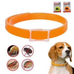 Dog Flea Collar Anti Insect Mosquito Pet Cat Flea Collar Puppy Repel Protection