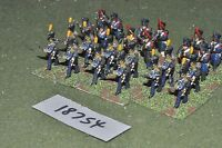 25mm napoleonic / french - infantry 24 figs - inf (18754)
