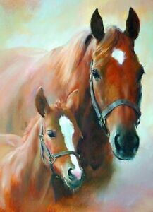 Birthday Card - Mare & Foal Horse - Country Cards Quality NEW