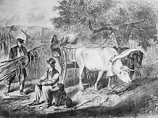 E. Forbes GATHERING CORN Farmers Oxen Black Worker 1865 Antique Print Matted