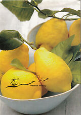 Kunstpostkarte -  Zitrusfrüchte - Zitronen