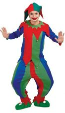 Adult Mens Colourful Jester Halloween Carnival Fancy Dress Costume Outfit Large