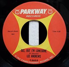 Lee Andrews / DooWop 45 / I'm Sorry, Pillow / Gee, But I'm Lonesome / Parkway