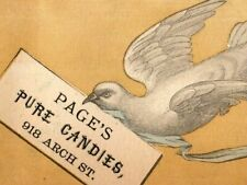 1870's Page's Pure Candy Candy Maker White Dove Carrying Message Image P168