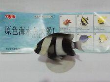 Yujin 原色海水魚圖鑑 I #02
