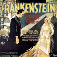 1931 FRANKENSTEIN BORIS KARLOFF VINTAGE MOVIE POSTER PRINT 24x24 STYLE D 9 MIL