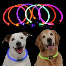 Waterproof USB Rechargeable Pet Dog Collar LED Flashing Light Up Safety Belt New