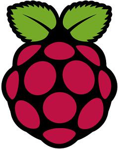 "Raspberry Pi OS/Raspian ""Buster"" - 32 GB MicroSD Card For ALL Raspberry Pi"