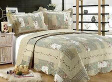 55- All For You 3PC quilt set, bedspread and coverlet-Sage/Grayish Green-5 Sizes