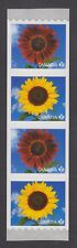 "CANADA COIL STRIP #2441-2442 4 x 85c ""p"" SUNFLOWERS - PRADO RED & SUNBRIGHT"