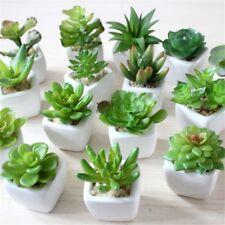 Artificial Succulents Plant Garden Mini Fake Cactus DIY Home Floral Decor new