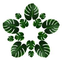 66 Pcs Artificial Tropical Palm Leaves Decorations Fake Leaf for Hawaiian T C2V3