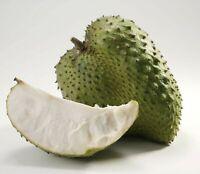 10Pcs Annona Muricata Fruit Seeds Rare 3 Kind Bonsai Against the Disease