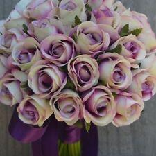 5 graines rosier rare Romantic Scarlett