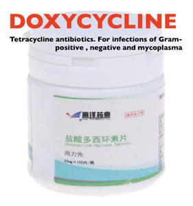 1 Bottle Anticatarrhal Tablets 50mg 100 Tablets Cat Treatment