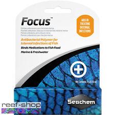 Seachem Focus 5g Antibacterial Polymer Treats Internal Fish Infections