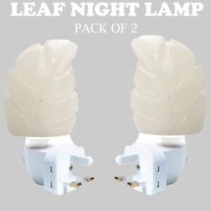 Himalayan Leaf Hand Carved Crystal Rock Salt Lamp Night Light Wall Plugins
