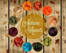 Autumn Accents Color Palette Wool Roving Fiber 3ozs/84gms. Felting Spinning Soap