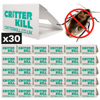 30 X COCKROACH TRAPS KILLER GLUE TRAP CRAWLING INSECT PEST CONTROL - PRO PRODUCT