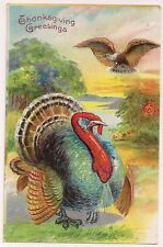Patriotic Thanksgiving Greeting American Eagle or the Turkey   Postcard