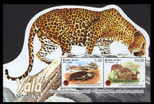 Sri Lanka 2013 Odd SS, Yala National Park, Cheeta, Turtle, Wild Catlike Animals