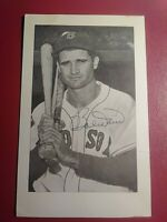 Bobby Doerr Boston Red Sox 1940s Autograph Signed Photo