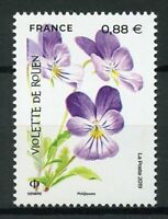France 2019 MNH Violet of Rouen Endangered Flora 1v Set Flowers Nature Stamps