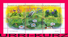 MOLDOVA 2008 Nature Flora Endangered Plants Flowers s-s Mi Bl.39(616-618) MNH