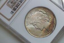 1922 Peace Dollar NGC MS64 - Beautiful toning! - No Reserve