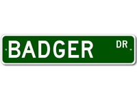 BADGER Street Sign - Personalized Last Name Sign