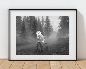 Owl Snowy Bathroom Home Décor Grey White Photo Picture 8x10 No Frame