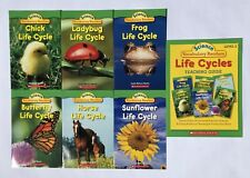 Life Cycles Vocabulary Readers Science Children's Books and Teaching Guide