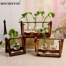 Creative Hydroponic Plant Transparent Vase Wooden Frame Glass Tabletop Flowerpot