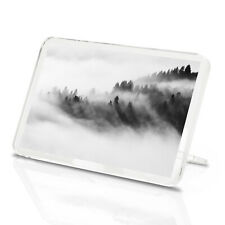 Beautiful Misty Forest Classic Fridge Magnet - Trees Spooky Nature Gift #14165