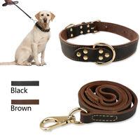 Genuine Leather Dog Collar& Lead Heavy Duty for Medium Large Breed Pitbull Boxer