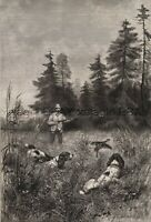 Dog Cocker Spaniels (Breed ID'd) Hunting Corncrakes, Large 1880s Antique Print