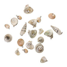 1 Pack Gilding Shell Conch Beads Pendant Charms for Jewelry Making Bracelet