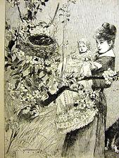 Alfred Brennan COCK ROBIN'S FAMILY Baby Bird Nest 1887 Antique Art Print Matted