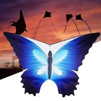 Blue Butterfly Kite+30m Kite Line Single Line For Kids &Adults Easy To Fly New